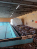 Renovering af Svømmehal 2019